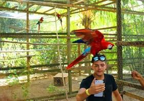 Roatan Highlights-Wildlife Rescue Park-Beach Break Excursion