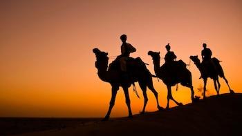 Camel Safari Through The Thar Desert with Transports