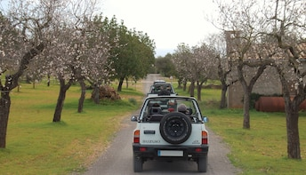 Discovery Mallorca Jeep Day Tour with lunch