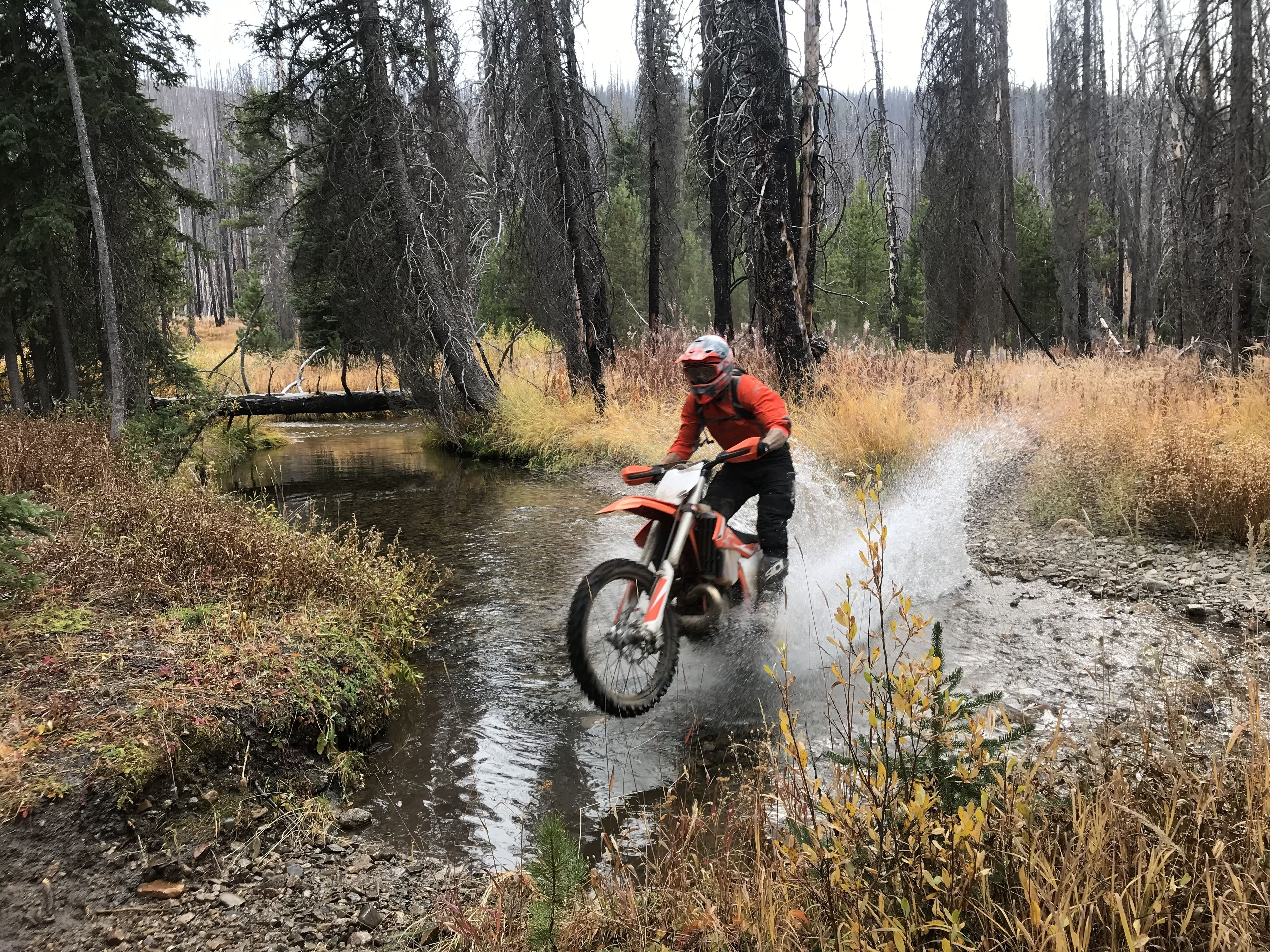 Single Track Motorcycle Tour in the Wasatch mountains