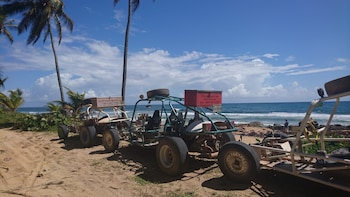 Xtreme Buggy Full day: Dune Buggy tour with the best views