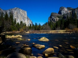 Yosemite National Park Tour