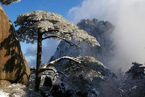 Mt Huangshan(Yellow Mountain) One Day Group Tour-No Shopping