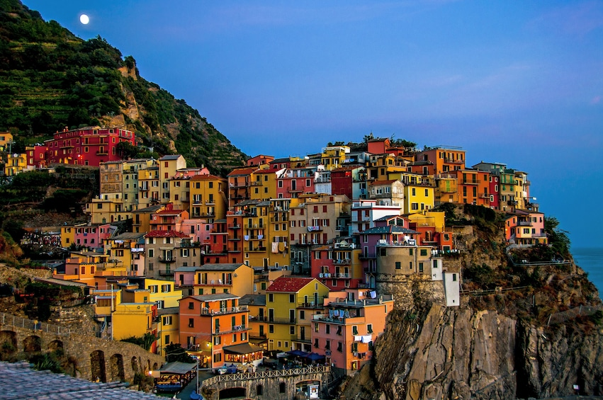 Show item 5 of 6. Cinque Terre full day
