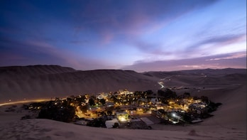 Tour to Paracas, Ica & Huacachina (From Lima)