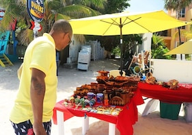 Roatan Private Tour Shopping Sightseeing & Beach Excursion