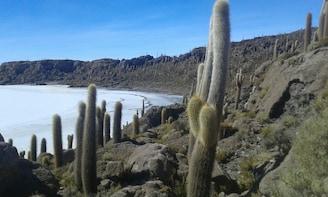 Full-Day Tour to Salar de Uyuni Salt Flats