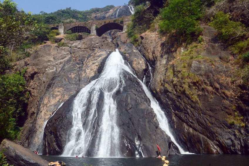 Show item 3 of 4. Dudhsagar Waterfall Wildlife Excursion Tour from Goa
