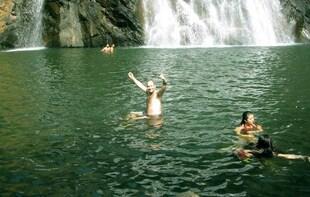 Dudhsagar Waterfall Wildlife Excursion Tour from Goa