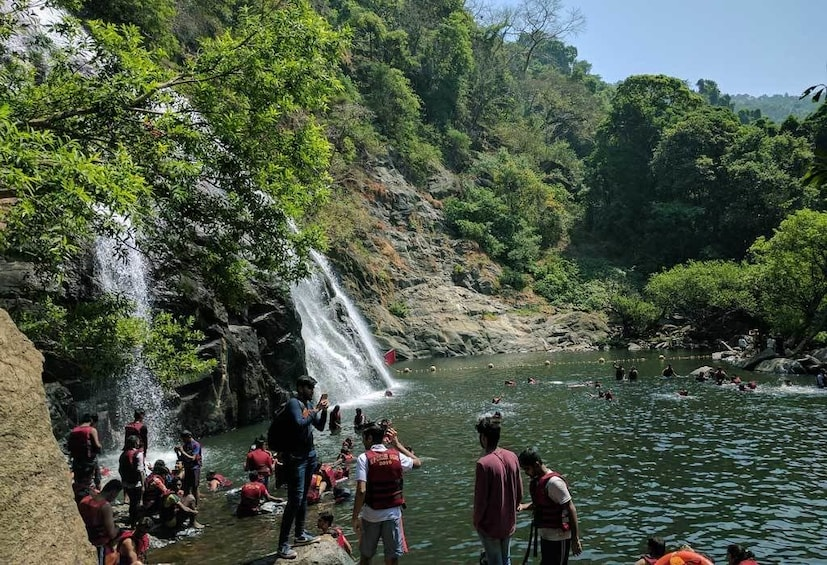 Show item 2 of 4. Dudhsagar Waterfall Wildlife Excursion Tour from Goa