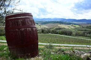 Small-Group Wine & Food in Chianti Classico Half Day
