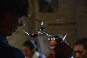 Private tour in the land of Super Tuscan Wines-Bolgheri