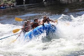 Salmon River 1/2 Day Rafting Trips