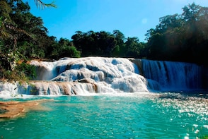 ARCHEOLOGICAL ZONE OF PALENQUE AND WATERFALLS