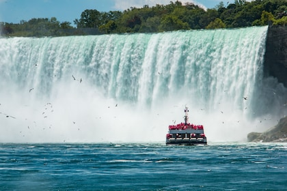 5-Star Toronto to Niagara Tour w/ Hornblower Boat & Lunch