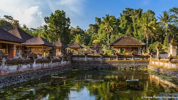All of Ubud: Monkey Forest, Volcano, Temples, Rice Terrace