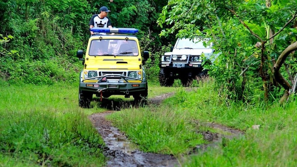 Jeeps on dirt trail on salak plantation in Bali