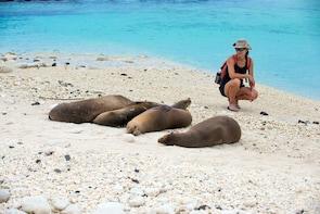 4 Day Galapagos Budget Island Hopping