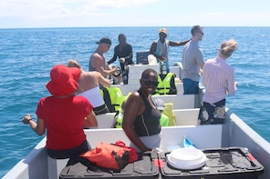 Bze Traditional Hook & Cook Island Expedition
