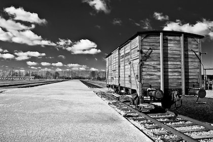 Auschwitz Birkenau Selfguided tour from Krakow