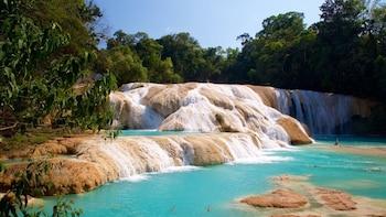 Agua Azul & Misol-Ha Waterfalls and Palenque Ruins