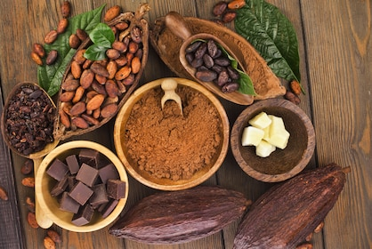 Cacao all forms.jpg