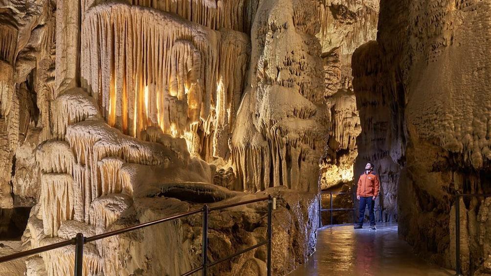 Show item 4 of 10. Postojna Caves & Predjama Castle For Dumbies (Private Tour)