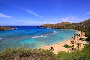 Snorkel Experience at Hanauma Bay