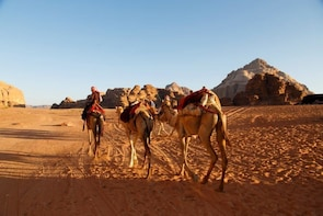 Shore Excursion - Unforgettable City Of Petra from Aqaba