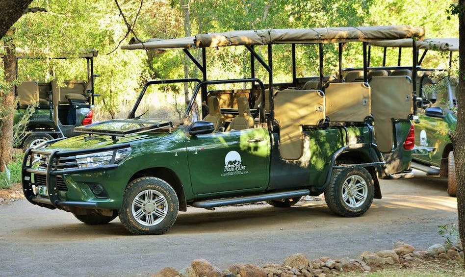 Show item 8 of 8. Ultimate Pilanesberg Open Vehicle Day Tour