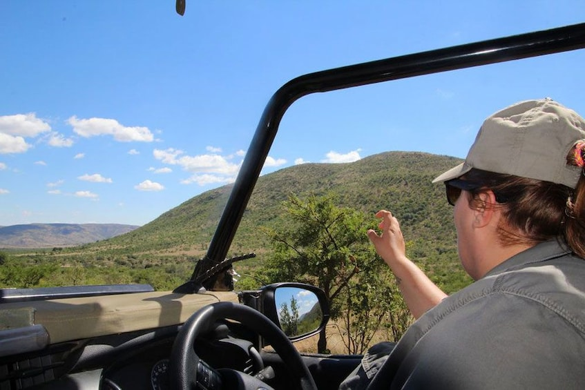 Show item 3 of 8. Ultimate Pilanesberg Open Vehicle Day Tour