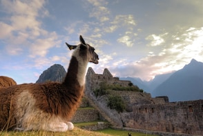 2 Days To Machu Picchu By Car- Special Offer