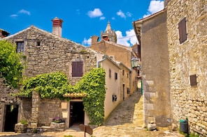 Private Istria Day trip from Zagreb