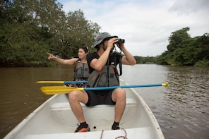 Canoe Experience at Río Frio and Caño Negro
