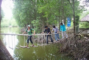 Can Gio Mangrove Forest on Premier Speedboat