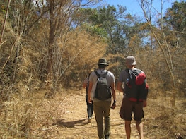 3-days 2-nights Trekking Katang trail to the Secret Forest