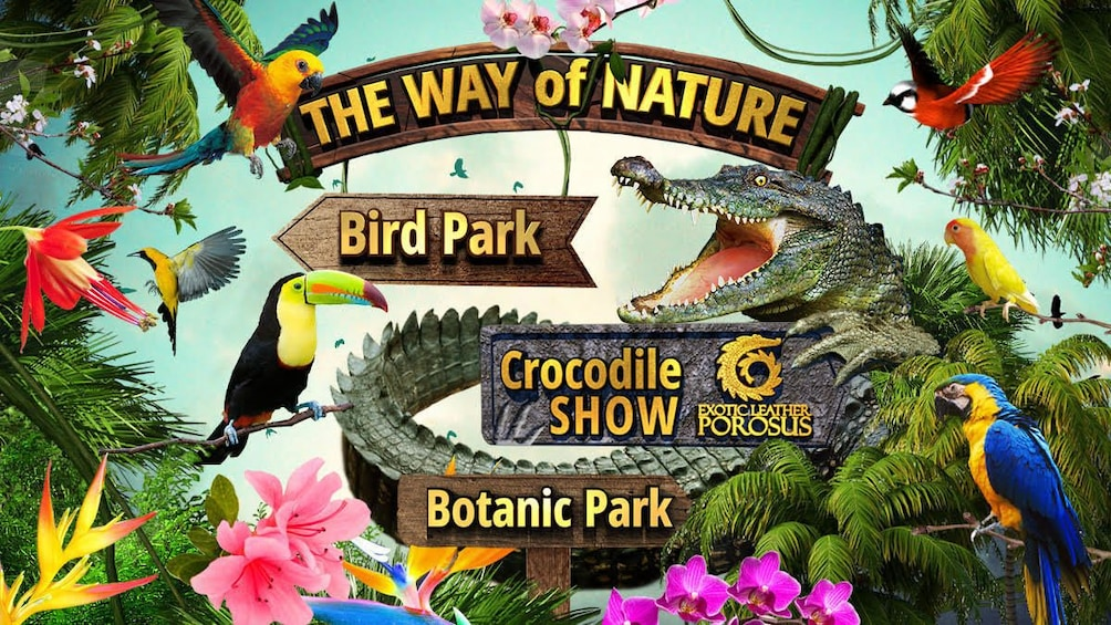 Show item 1 of 6. The Way of Nature: birds, flowers and crocodiles