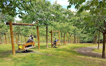 Hanging benches in the Alnwick Gardens