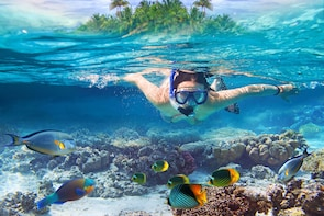 Phi Phi Full Day Semiprivate Tour