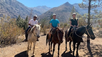 Andes Mountains Horseback Ride & Winery Tour and Tasting
