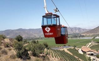 Private Colchagua Valley Wine Tour: Santa Cruz & Viu Manent