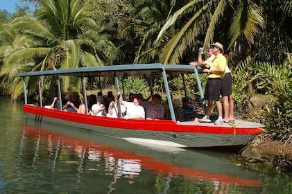 Damas Island Mangrove Boat Trip