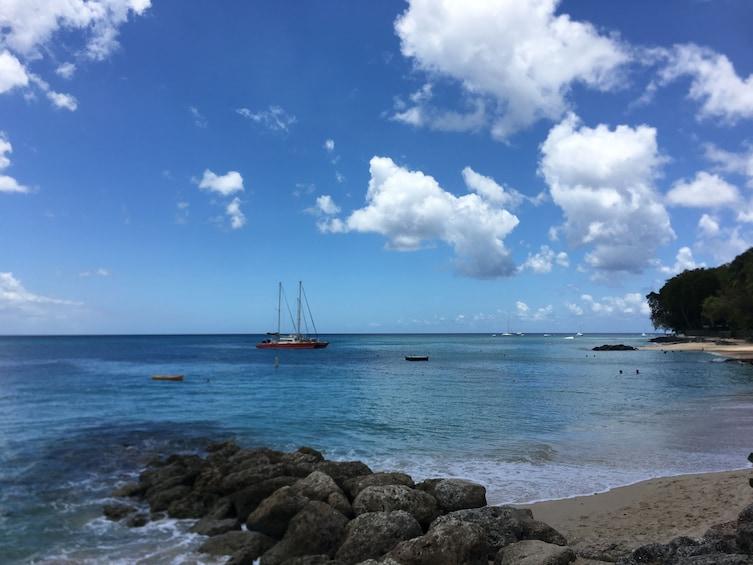 Show item 10 of 10. Turtle, Tropical Fish & Shipwreck 3 Hour Snorkel Tour