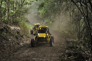 3-hour Buggy Route to Cumbre Nueva in La Palma