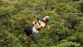 Rainforest Canopy Tour From San José