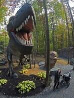 Vol 315, l'ère des dinosaures
