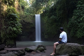 Exotic Waterfall, Ubud Swing & Monkey Forest Private Tour