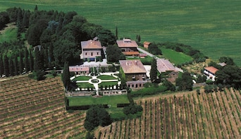 Lucignano Vineyard Tour & Wine Tasting in Agricola Fabbriche