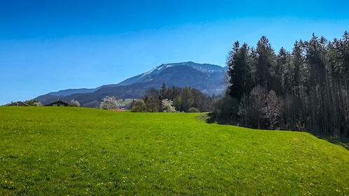 Offroad Segway Tour over the Samerberg from Nußdorf am Inn