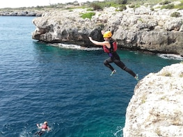 Coasteering AKA cliff jumping with Transport
